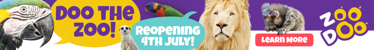 Zoo Doo Reopening