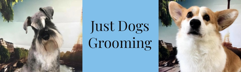 Just Dogs Grooming 1000x300 Banners