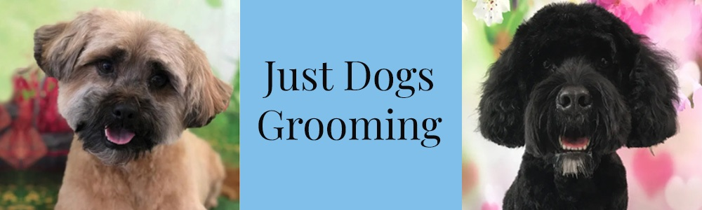 Just Dogs Grooming 1000x300 Banners3