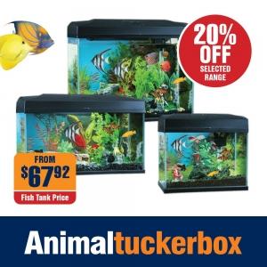 20% Off Blue Planet Fish Tanks