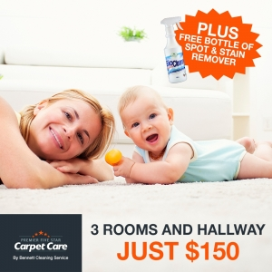 Get 3 rooms and hallway professionally cleaned for just $150.