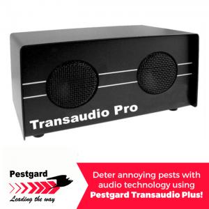 Pestgard Transaudio Plus