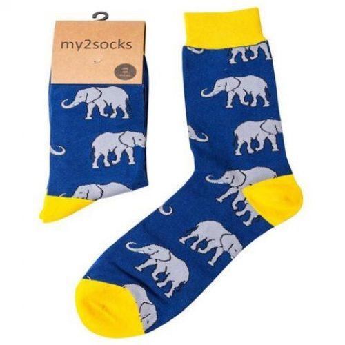 1444 Elephant 2