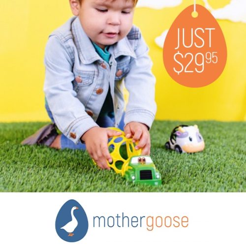 Mother Goose Oball Farming Toy