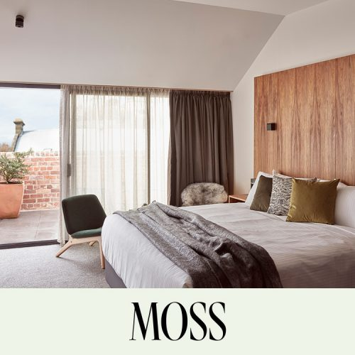 Moss Image3