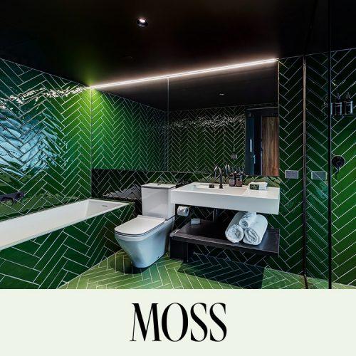 Moss Image6