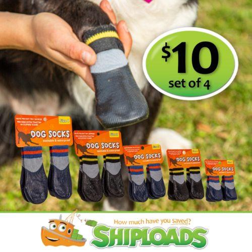 SHP Dog Socks