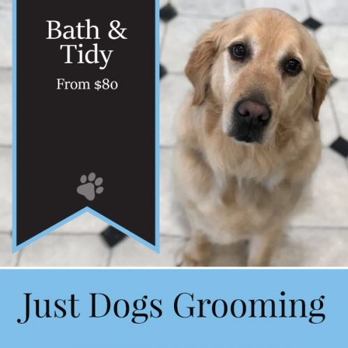 Just Dogs Grooming bath tidy 2