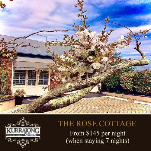 Rose Cottage 7
