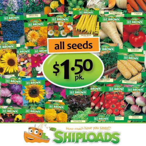 SHP Seeds