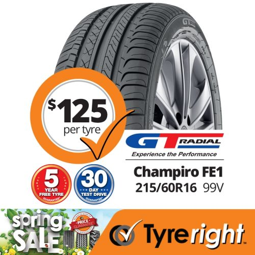 Tyreright Champiro FE1